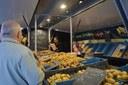 Le marché dominical de Jette reprend le 24 mai