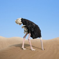 Wees geen struisvogel