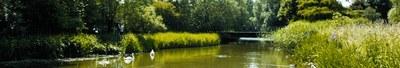 Banner Jette Boudewijnpark
